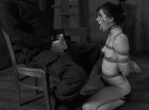 Journal d'une soumise 6 (récit BDSM)